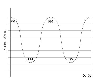 courbe-sinusoidale representant les marées de basse et pleine mer