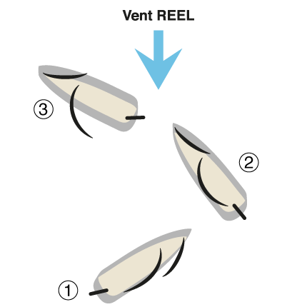 Shema de la mise à la cape à partir d'un virement de bord